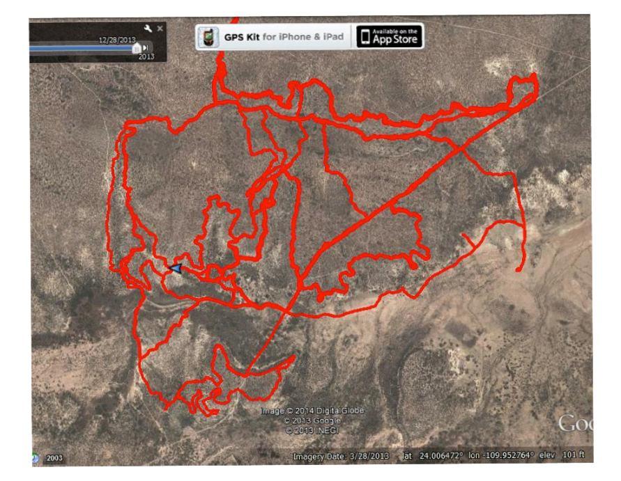 bufordora blowhole trails