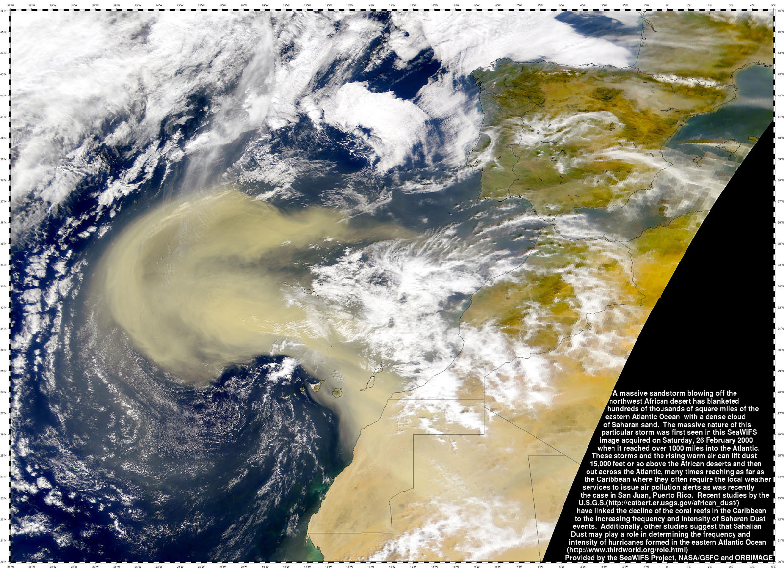 seawifs_canary_duststorm_large